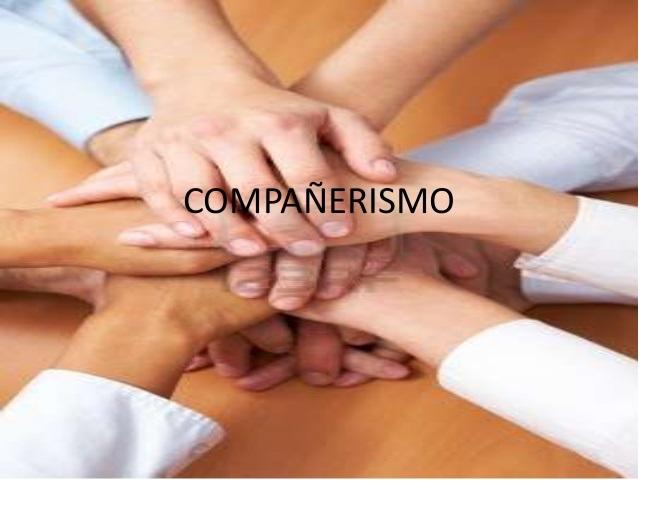 compañerismo