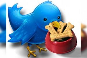 Alimentar Twitter